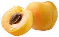 Yummy Yellow Peaches - Squish